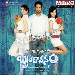 Brindavanam (2010) Telugu Movie Audio CD Front Covers, Posters, Pictures, Pics, Images, Photos, Wallpapers